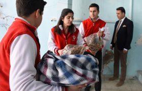 Terör mağdurlarından Zeytin Dalı Harekatına destek