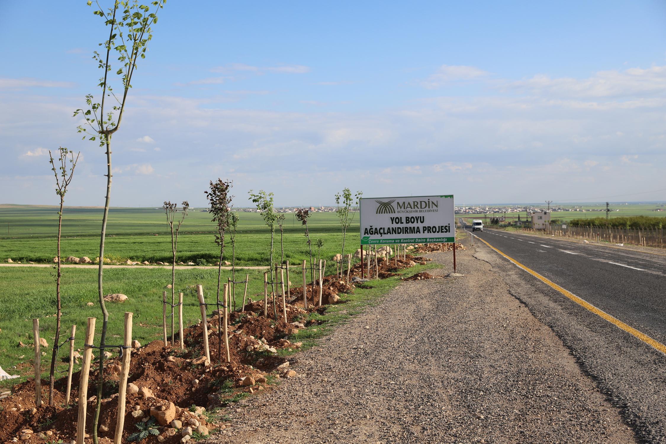 Yol Boyu Ağaçlandırma Projesi sürüyor