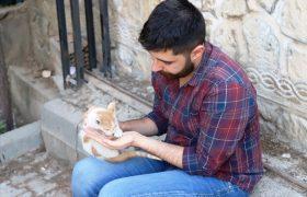 Sokak hayvanlarına sahip çıkıyor